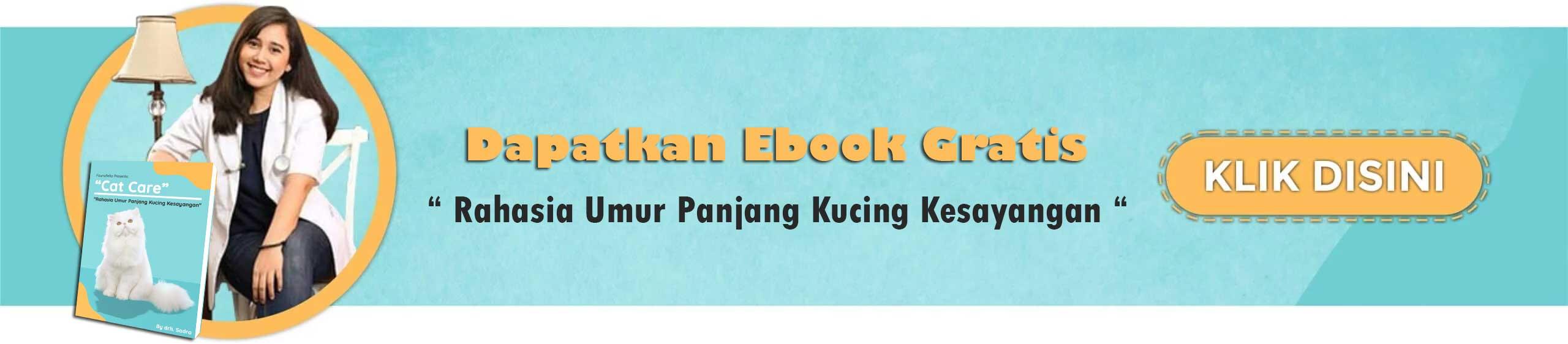 Download E Book Kucing Gratis Sekarang